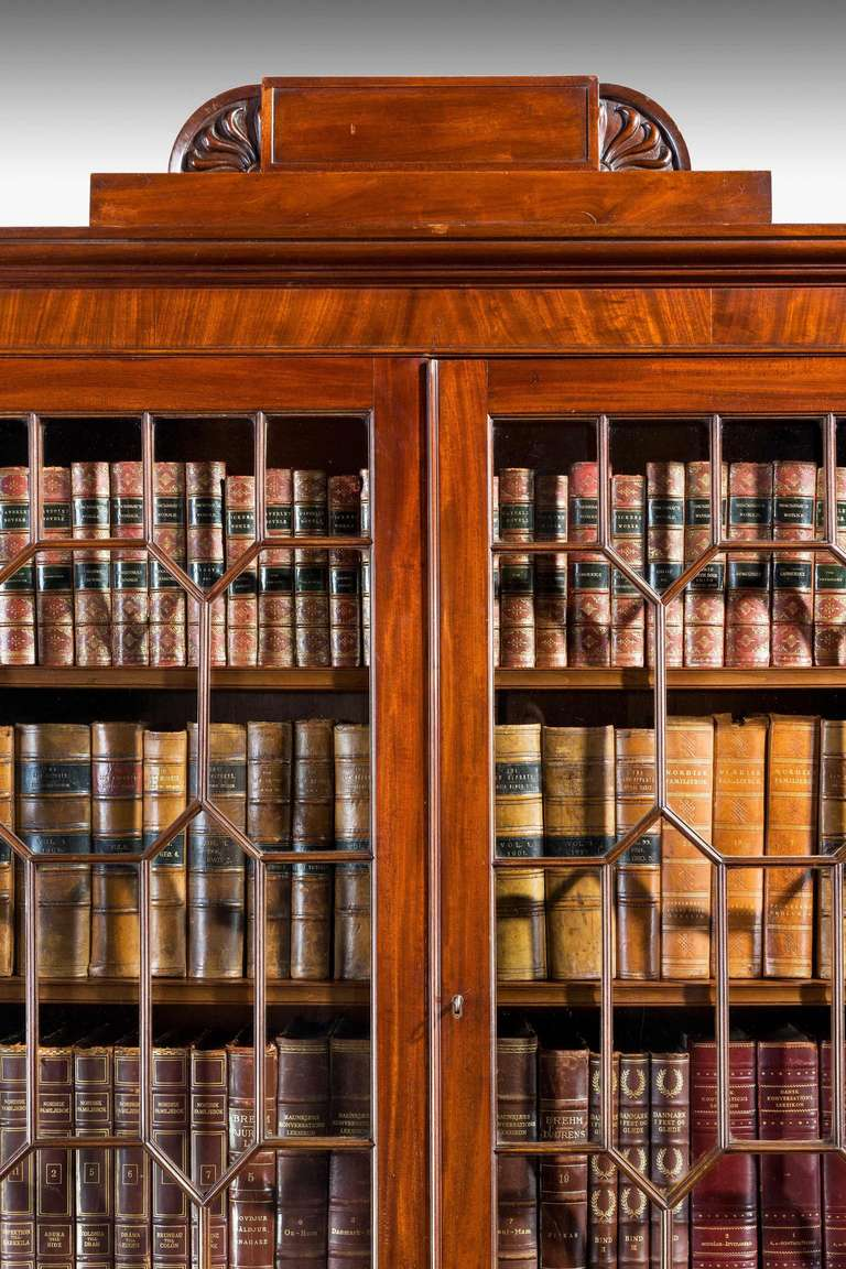 A good and original Regency period solid mahogany two-door bookcase, the top with stylized half round carved ends over complex glazed doors with two matching figured doors to the base, the whole standing on a solid plinth.