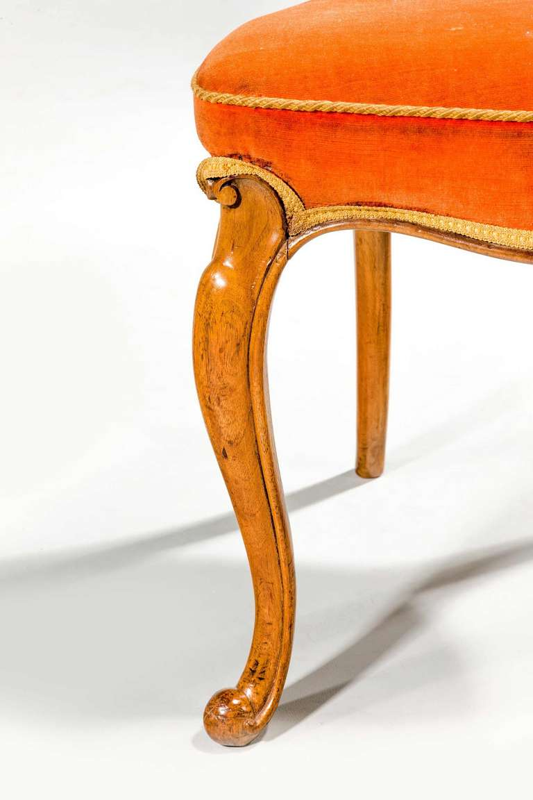 Set of Six 19th Century Satin Birch Dining Chairs For Sale 4