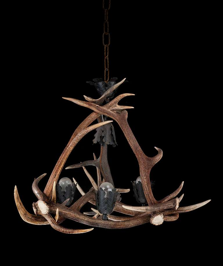 Early 20th Century Stag S Horn Four Light Chandelier For