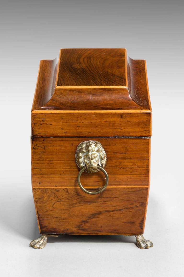 Regency Period Tea Caddy In Good Condition For Sale In Peterborough, Northamptonshire