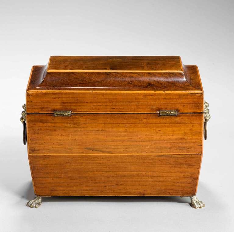 Regency Period Tea Caddy 6