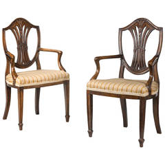 19th Century Pair of Children's Chairs of Hepplewhite Design
