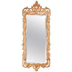 Mid-18th Century Rococo Giltwood Mirror