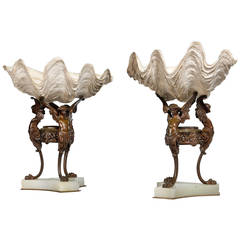 Pair of 19th Century Natural Conch Shells