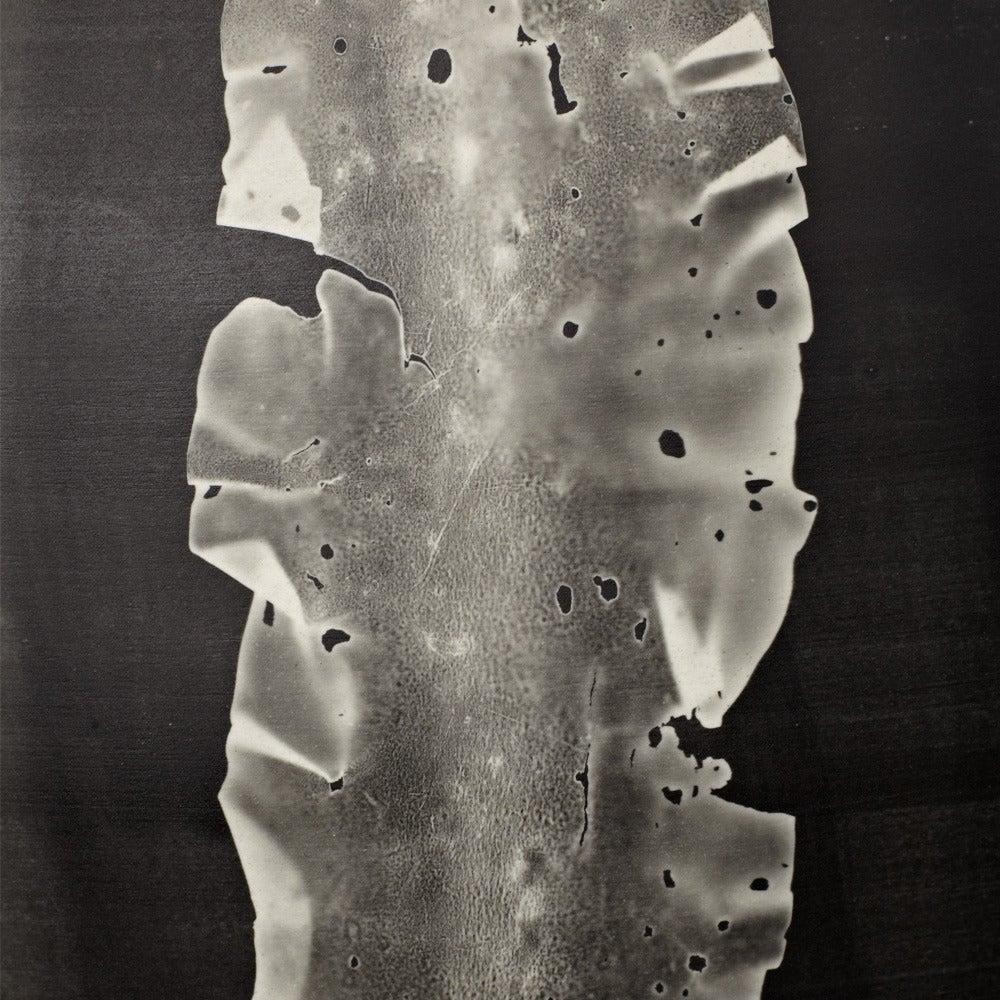 Modern Glithero Silverware Black White Printed Porcelain Vase Large For Sale