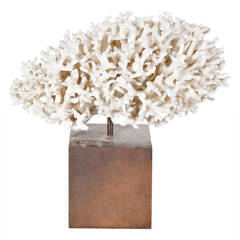 Beautiful Coral and Brass Sculpture