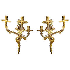 Unusually Large Pair of Louis XV Style Gilded Bronze Wall Lights
