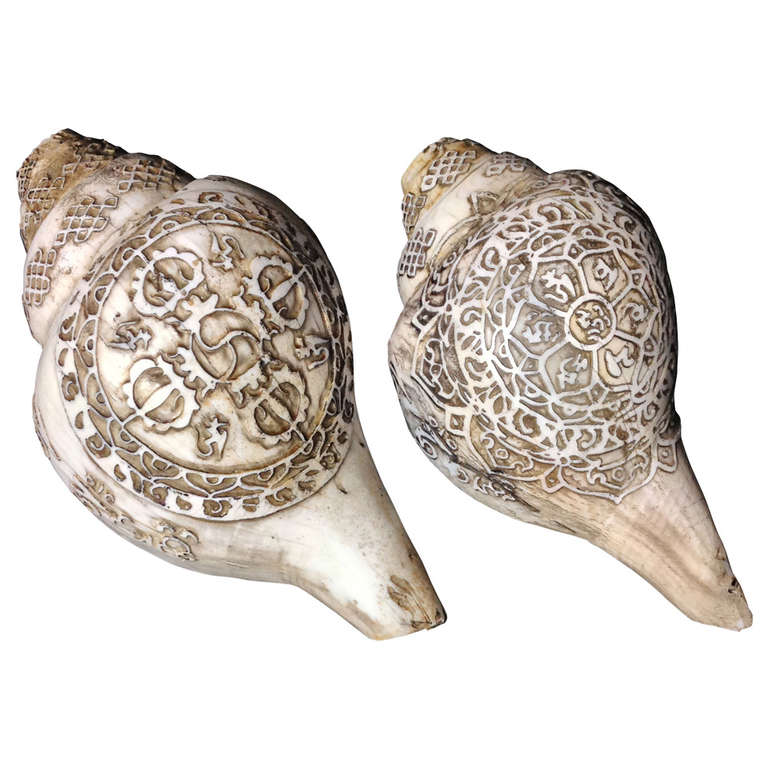 Carved Sea Shells from Tibet also known as Dung-Dkar For Sale