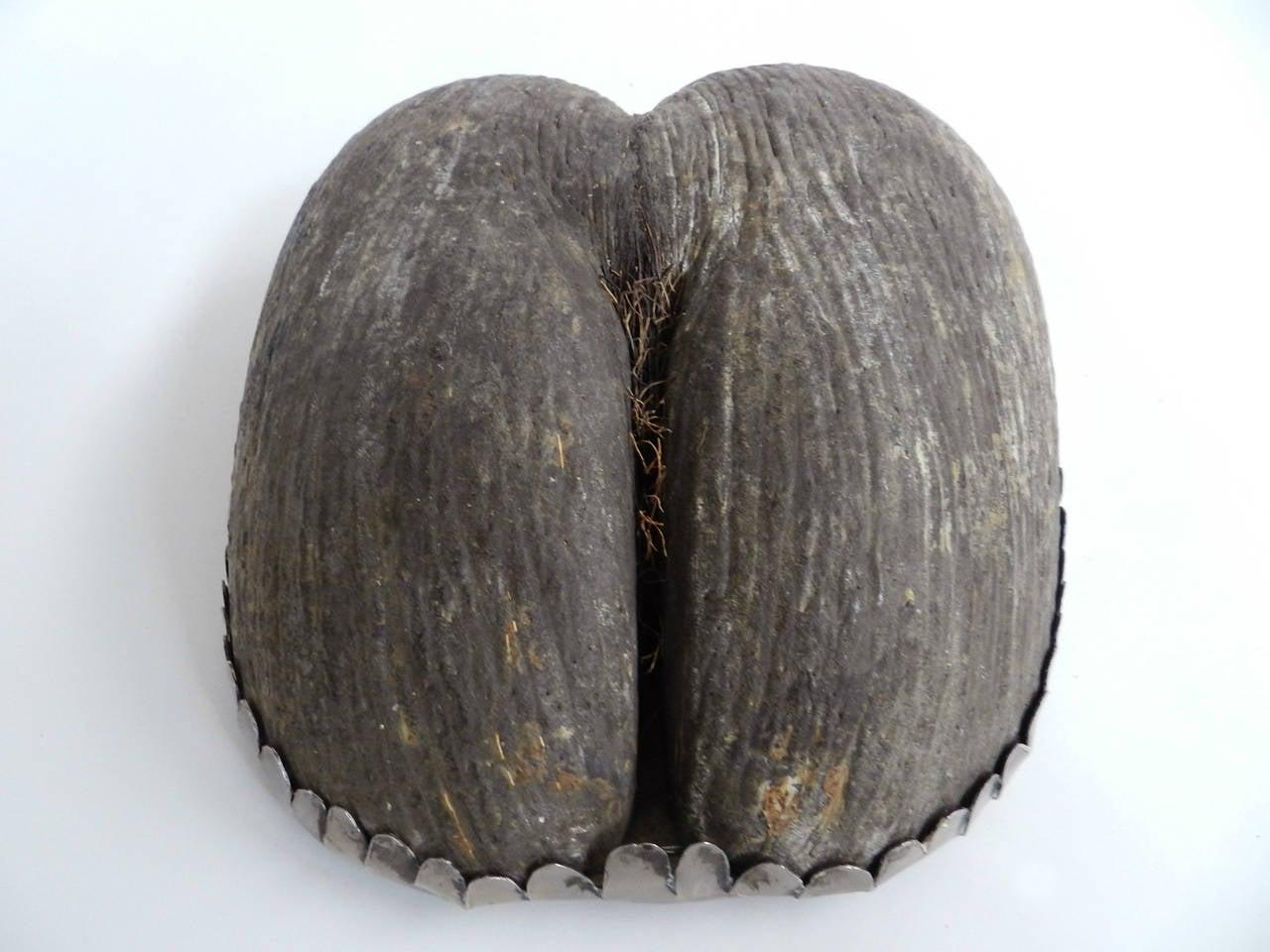 coconut bowls - photo #44