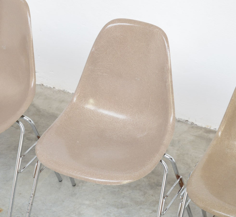 Fiberglass Side Chairs by Charles and Ray Eames for Herman Miller 4