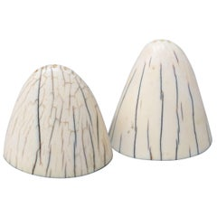 Set of Art Deco Tip of Walrus Tusks Salt and Pepper Shakers