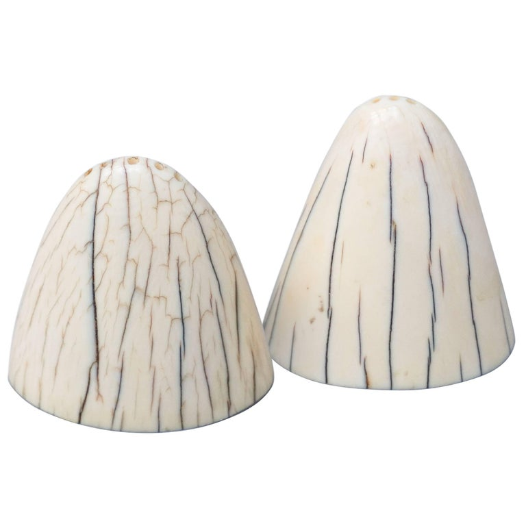 Set of Art Deco Tip of Walrus Tusks Salt and Pepper Shakers For Sale