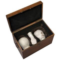 Three Mortuary Plaster Casts