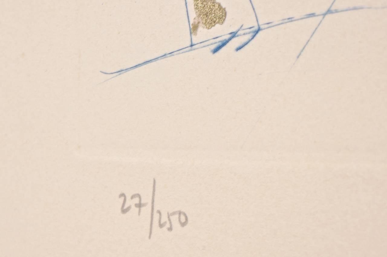 Salvador Dali Original Signed Lithographs with Applied ...