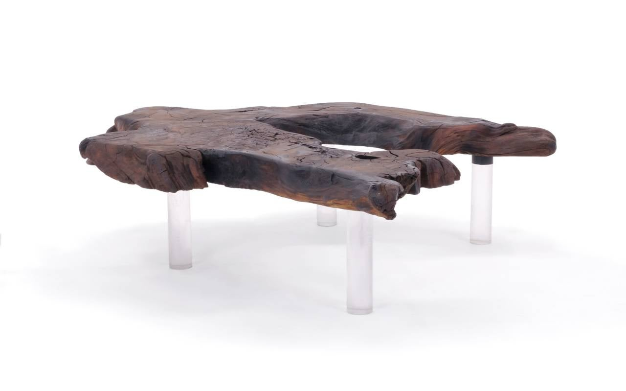 Walnut Slab Coffee Table Biomorphic Shape With Lucite Legs For Sale