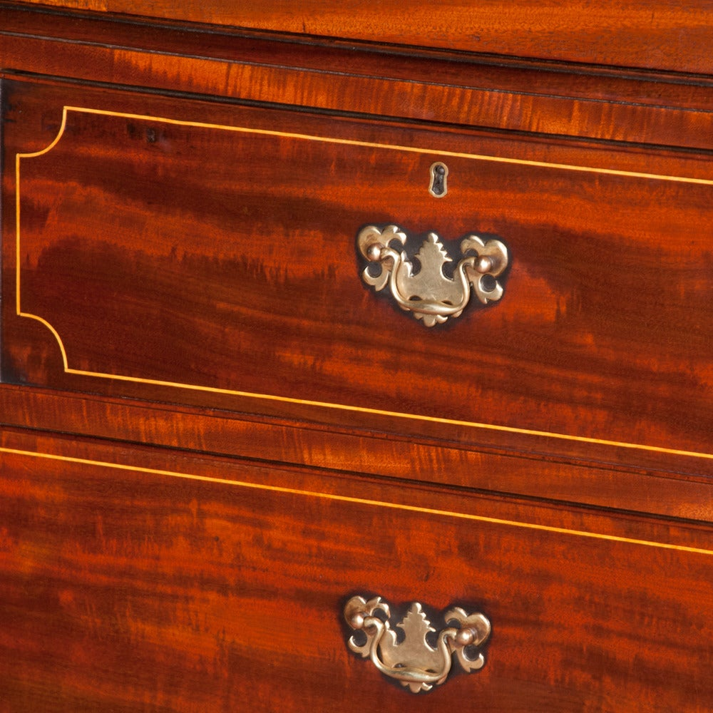 Chippendale Mahogany Linen Press In Good Condition For Sale In Lawrenceburg, TN
