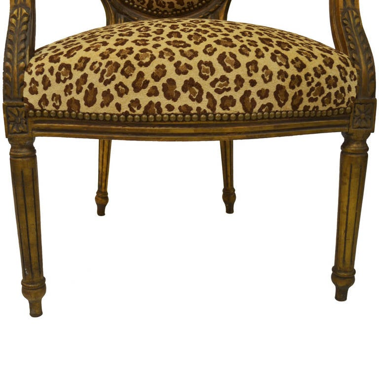 Pair of Animal Print Louis XVI Armchairs In Excellent Condition For Sale In Lawrenceburg, TN