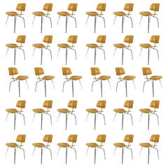 30 Charles Eames DCM Chairs for Herman Miller in White Ash