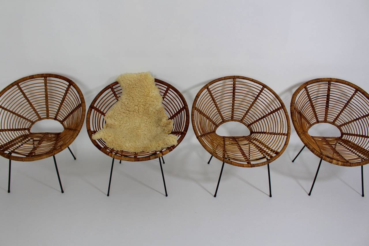 The presented set of four Riviera style rattan chairs features a black lacquered tube steel base with rubber sabots. Also the seat shells were made of rattan and have a nice patina. Additionally the seat shell can be easily removed and so it is easy