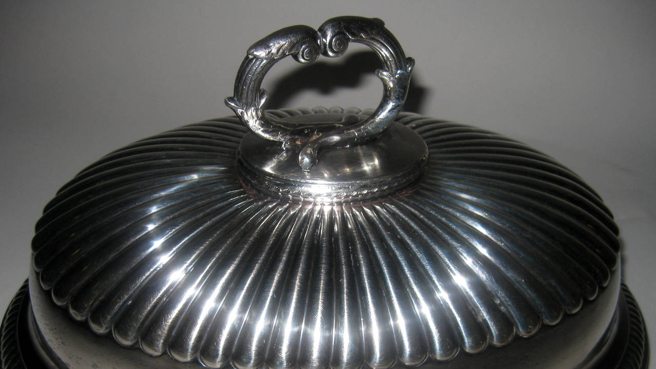 19th century English Sheffield Meat Dome In Good Condition For Sale In Savannah, GA