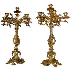 19th Century French Rococo Style Pair of Gold Gilt Candelabras