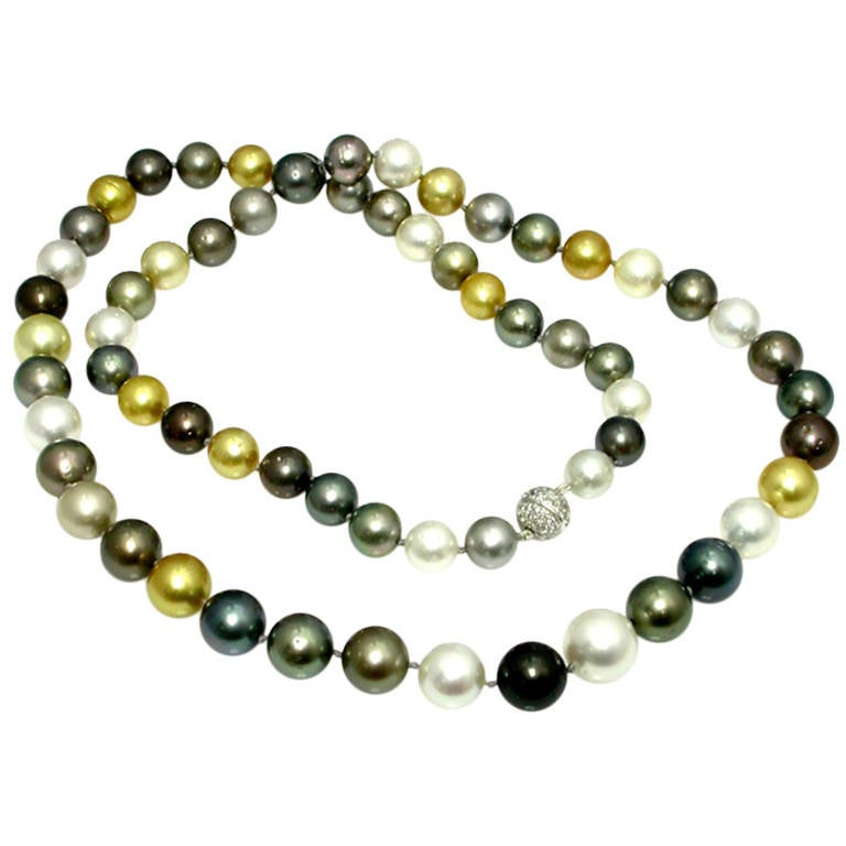 Multi Color South Sea Pearl Necklace