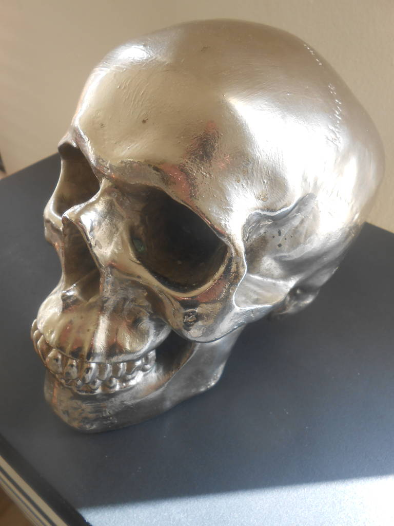 Nickel Plated Resin Skull For Sale At 1stdibs