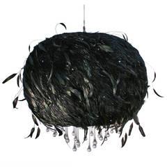 Black Cumulus