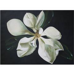 """Magnolia, XVII"" Oil Painting by John Woodrow Kelley"