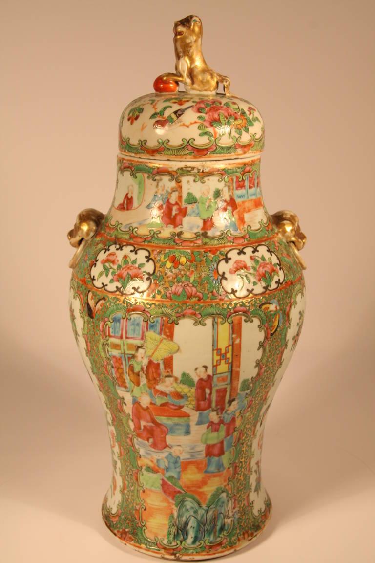 Qing Dynasty Rose Medallion Covered Urn At 1stdibs