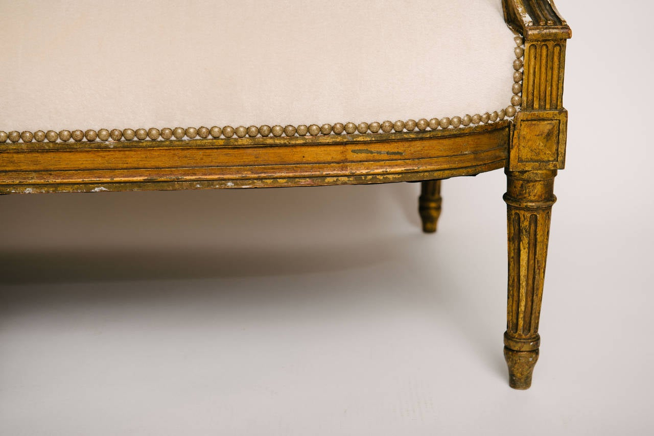 19th Century Louis XVI Style Giltwood Canapé For Sale 1