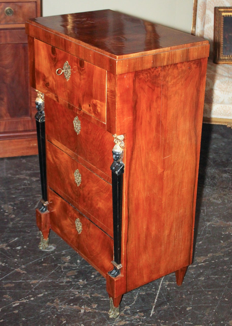 Bronze 19th Century German Biedermeier Tall Chest For Sale