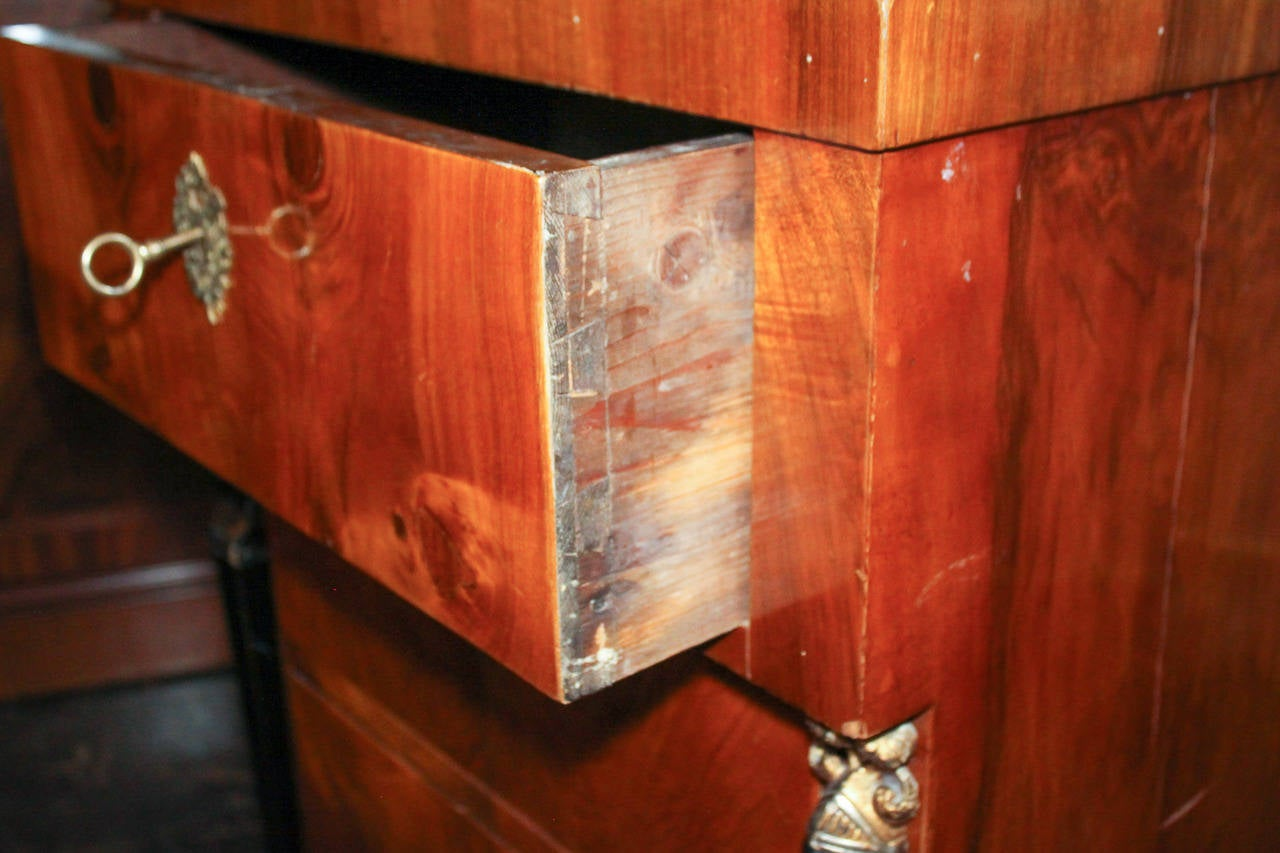 19th Century German Biedermeier Tall Chest For Sale 5