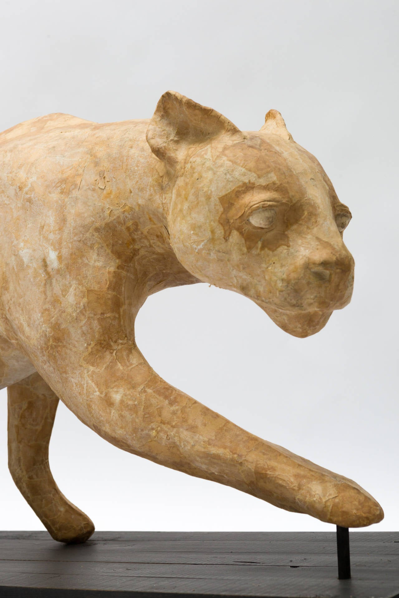 French Life Size Papier M Ch Taxidermy Model Of Panther