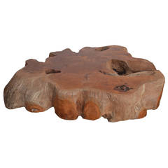 Large Root Coffee Table
