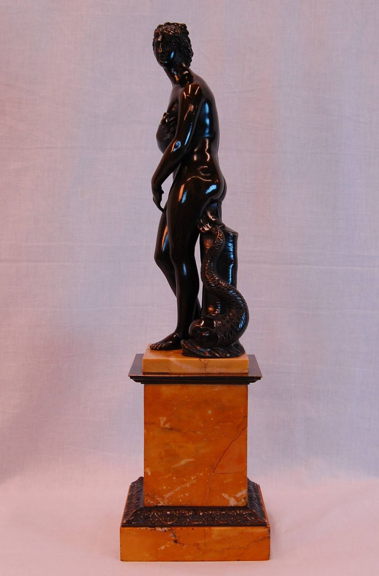 Bronze Venus de Medici with Dolphin of the Grand Tour, Late 19th Century For Sale 1
