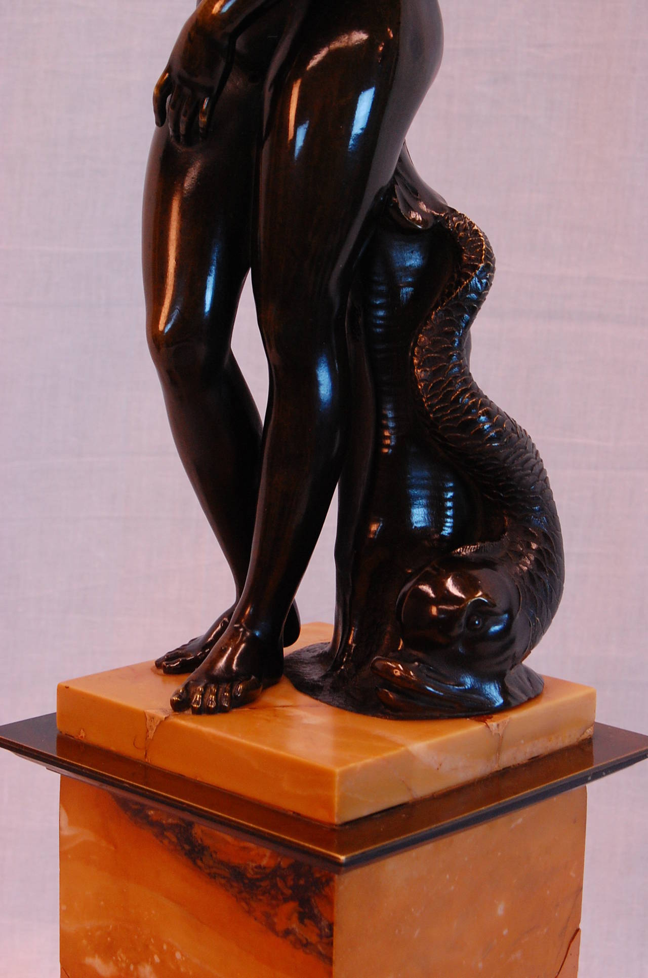 Bronze Venus de Medici with Dolphin of the Grand Tour, Late 19th Century For Sale 5