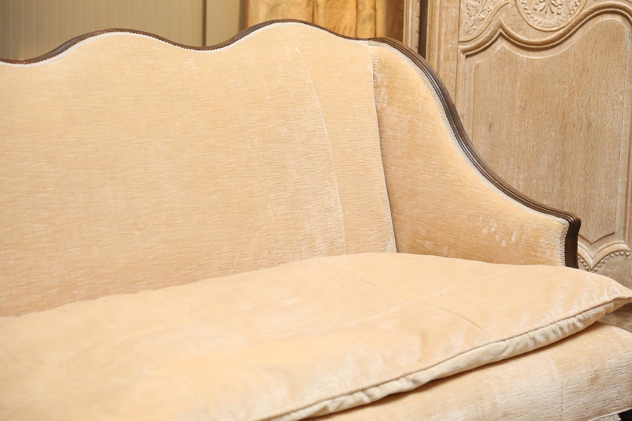 Louis XV 18th Century Oak Frame French Settee For Sale