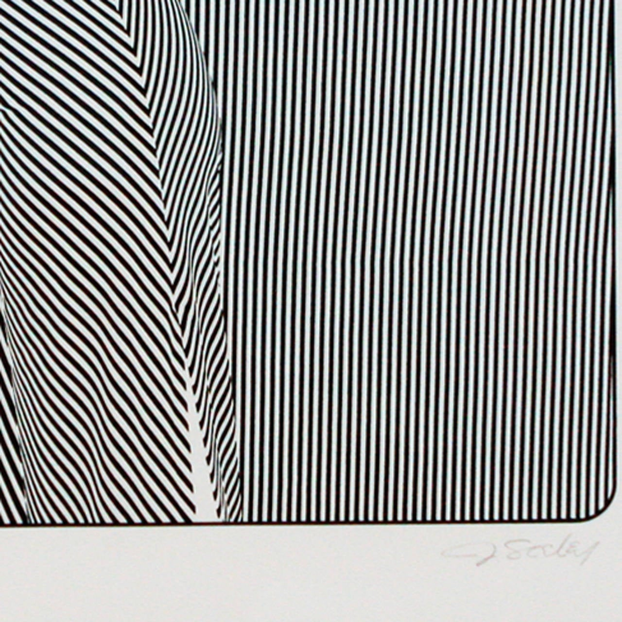American Op Art Lithograph, J Seeley For Sale