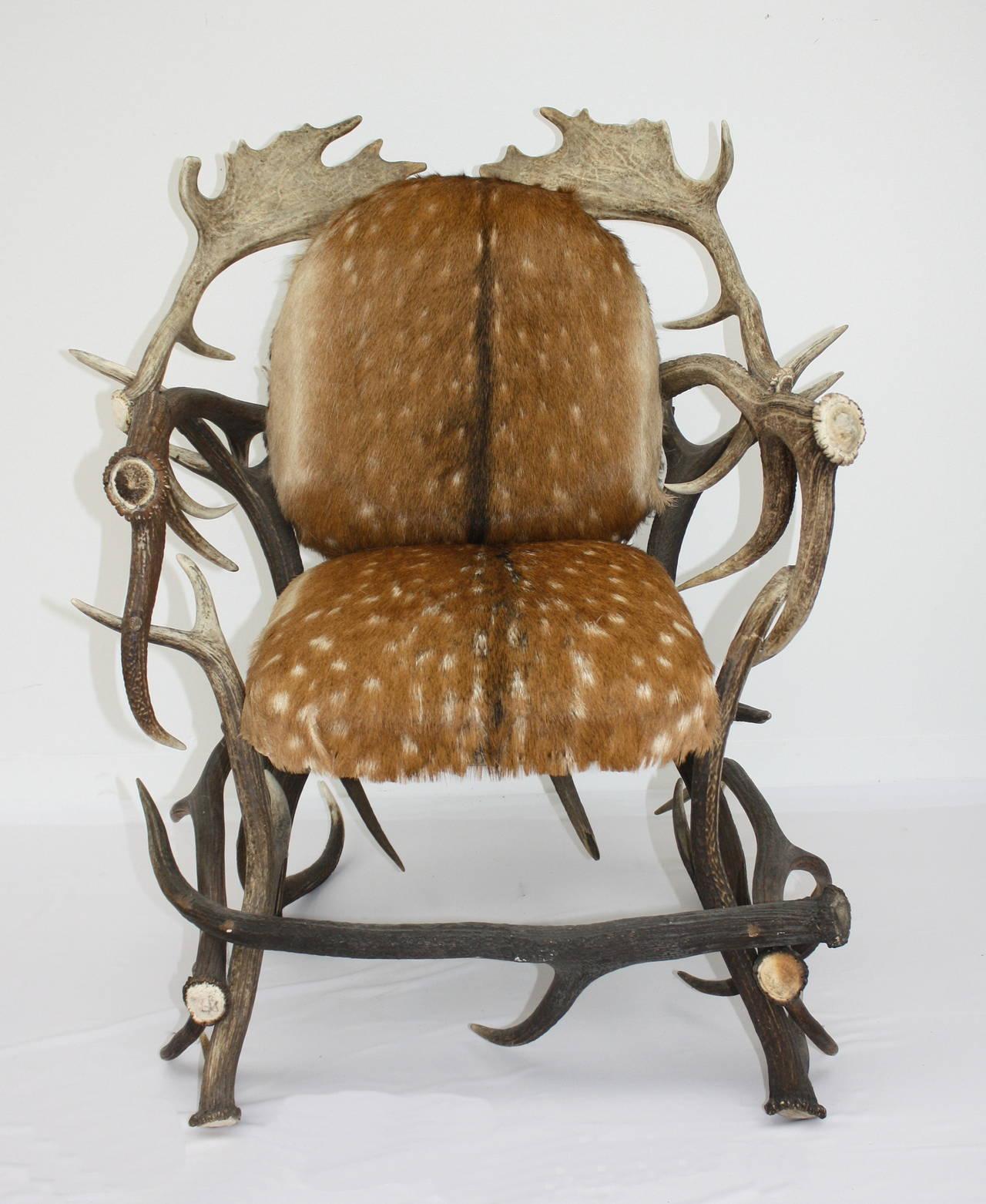 Incroyable Antler Armchair Upholstered In Deer Hide, Austria.