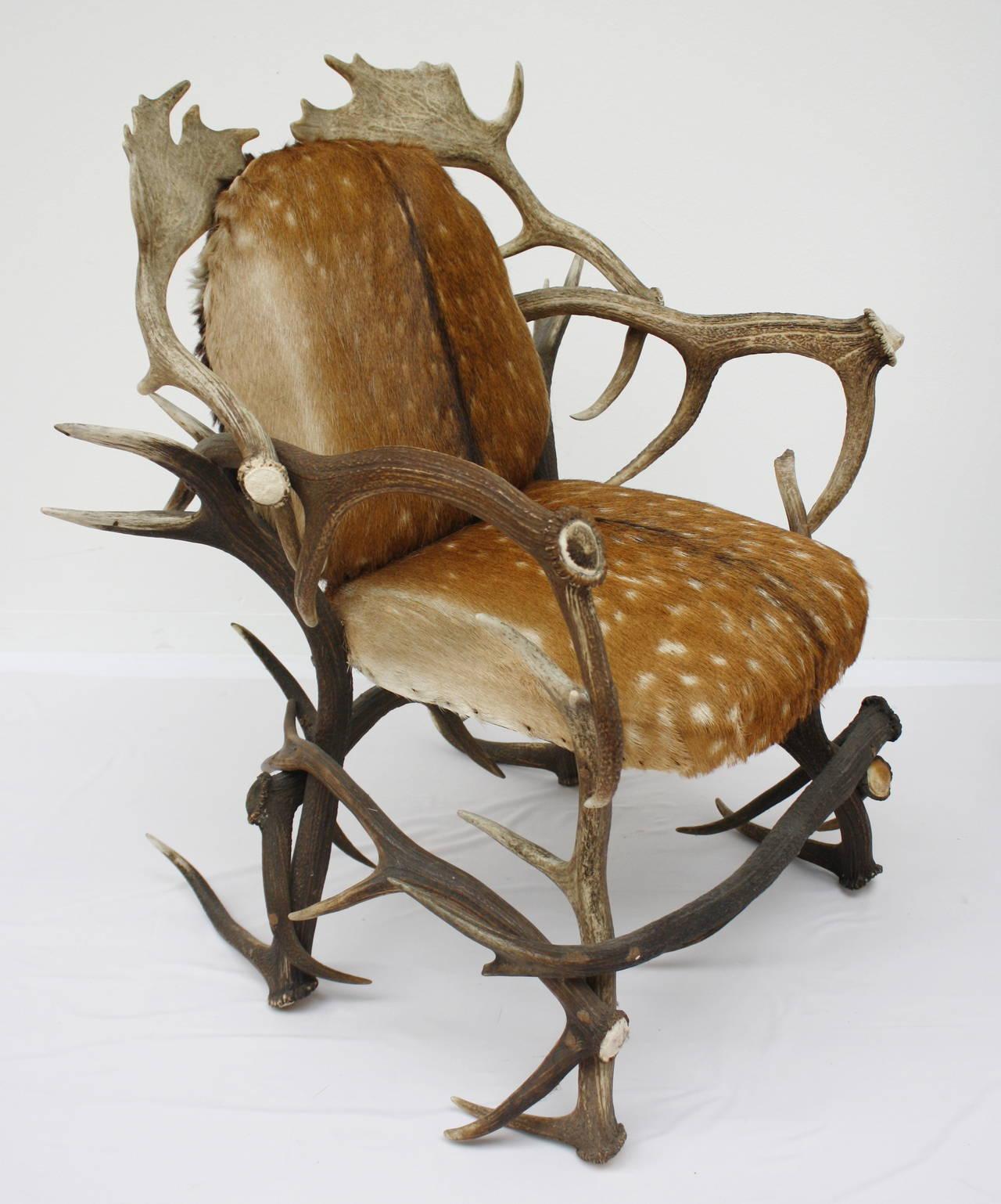 Austrian Antlers Chair 3
