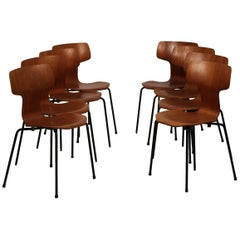 Mid Century Modern Set of 8 Model 3103 T-Chairs Designed by Arne Jacobsen