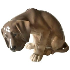 Royal Copenhagen Figurine Labrador Puppy BOB #318