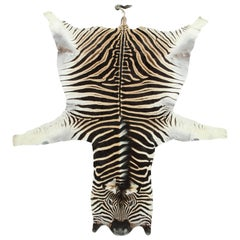 Zebra Hide Rug, Vintage