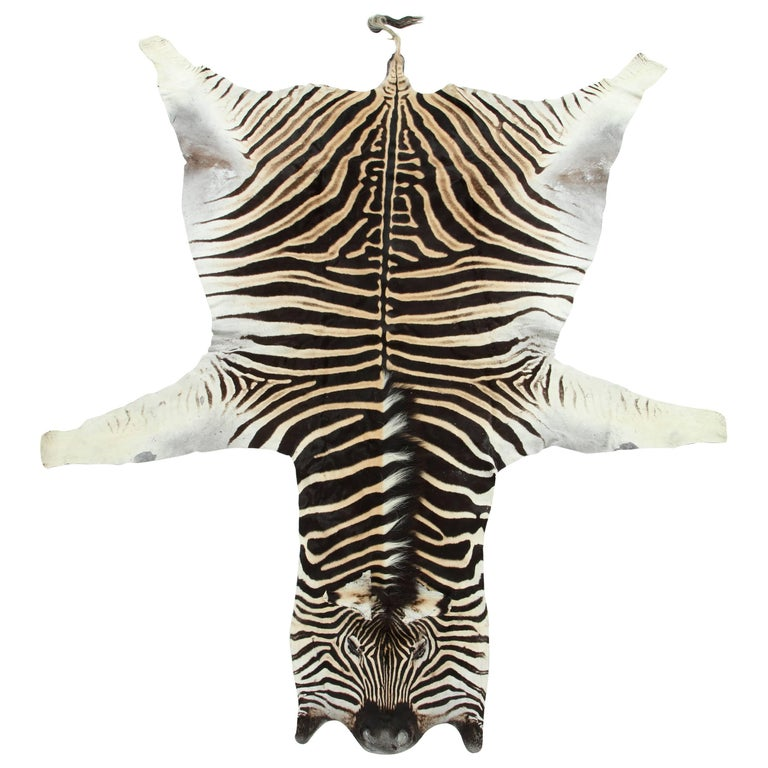 Zebra Hide Rug, Vintage For Sale