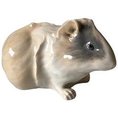 Royal Copenhagen Figurine of Guinea Pig #503