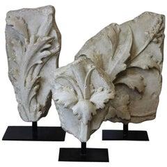 Decorative Set of Three Mounted Cast-Plaster Fragments