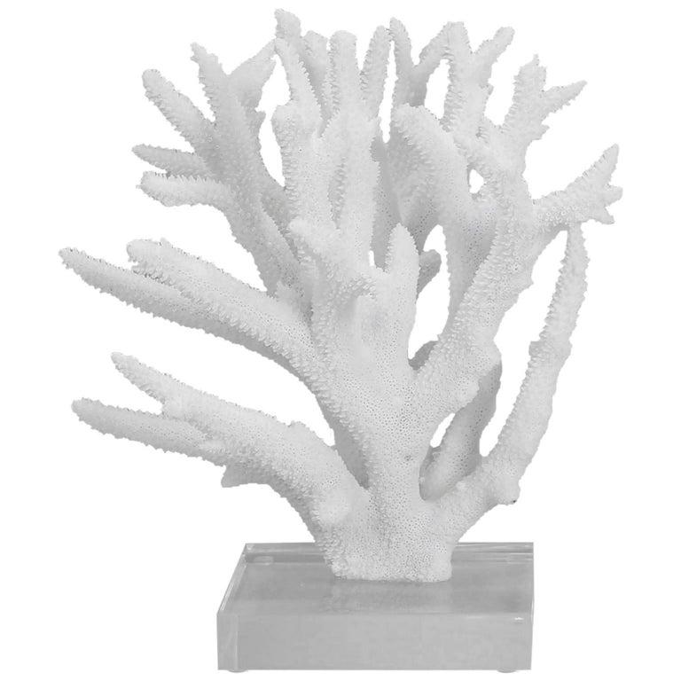 Branch Coral Sculpture
