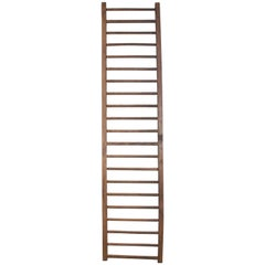 19th Century English Country Ladder