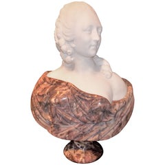 Lavender and Cream Marble Bust in Louis XVI Neoclassical Style